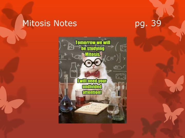 Mitosis Notes                    pg. 39