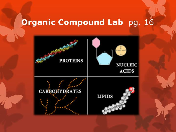 Organic Compound Lab