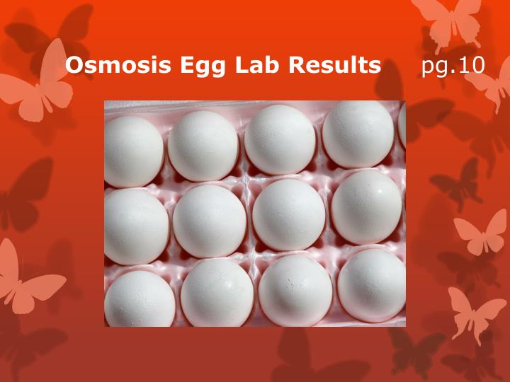 Osmosis Egg Lab Results