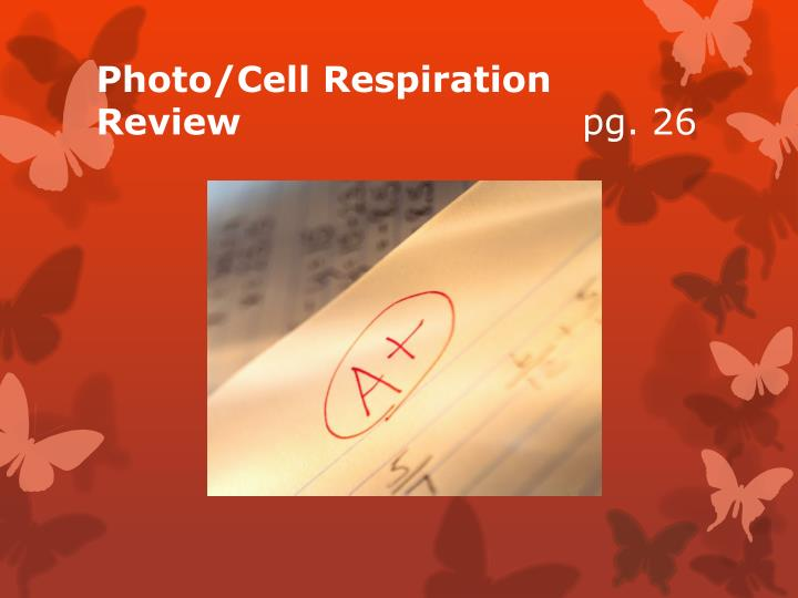 Photo/Cell Respiration  Review