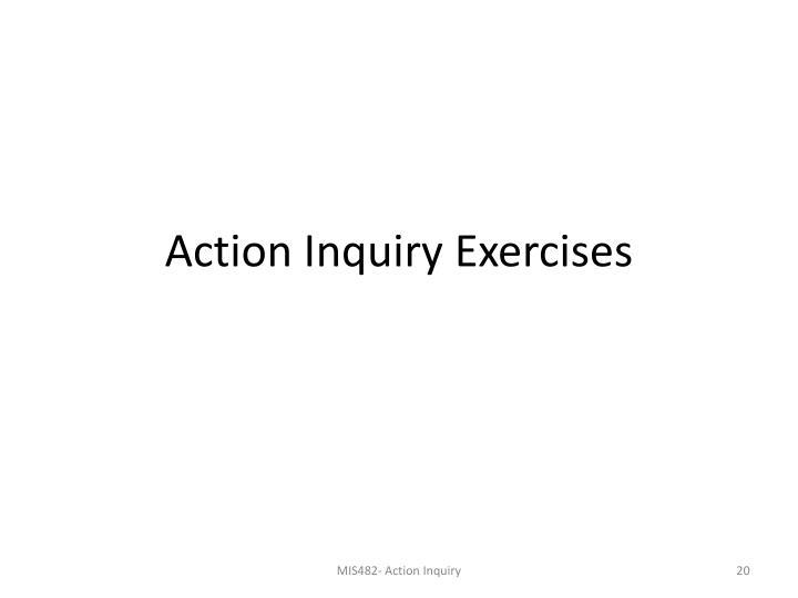 Action Inquiry Exercises