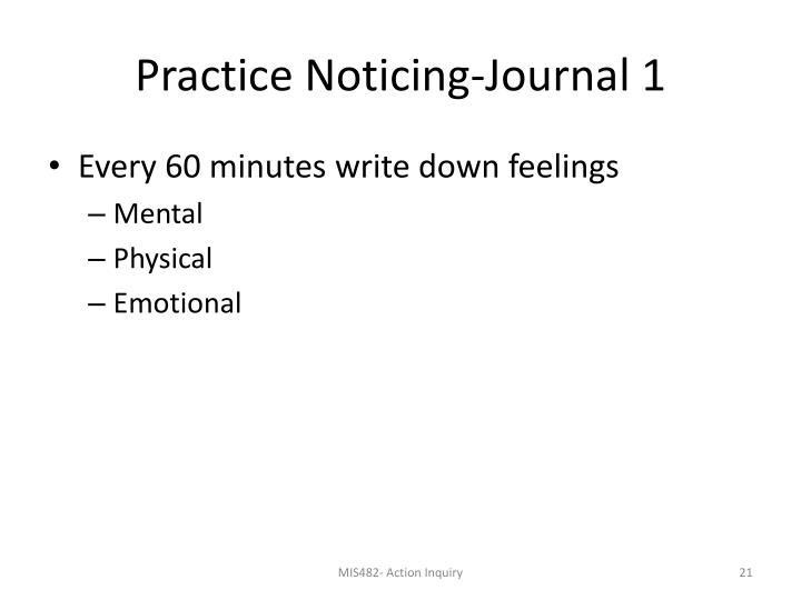 Practice Noticing-Journal 1