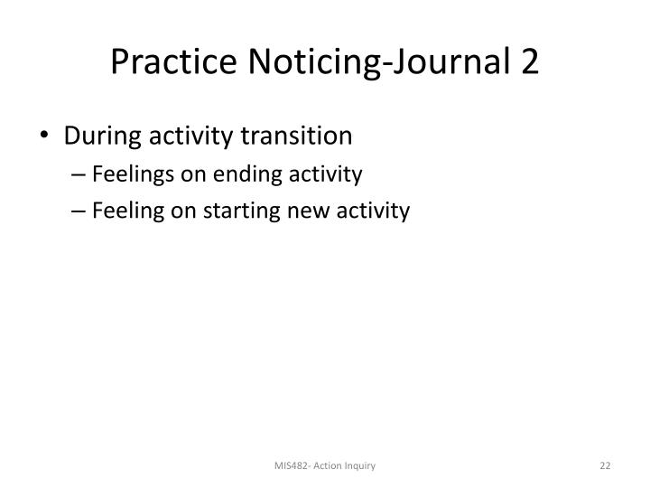 Practice Noticing-Journal 2