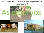 7 of 22 when do these different species look most similar1