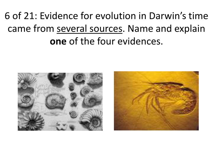 6 of 21: Evidence for evolution in Darwin's time came from