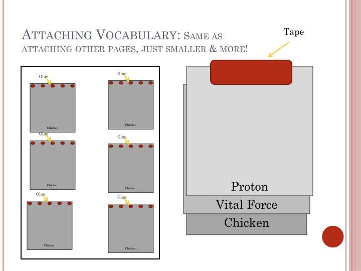 Attaching Vocabulary: