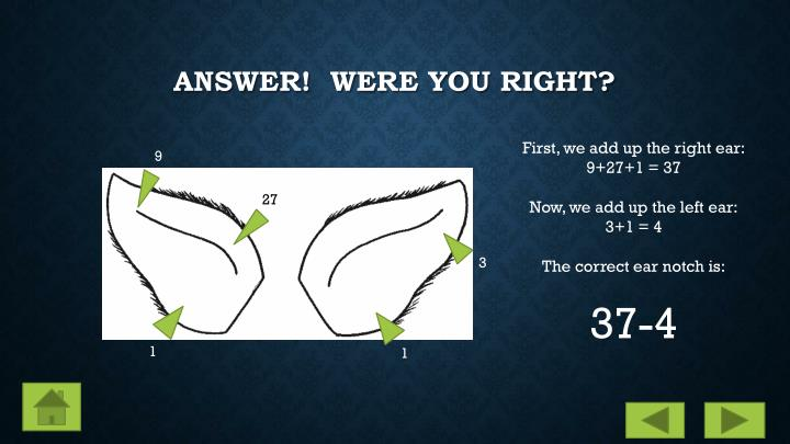 ANSWER!  Were you right?