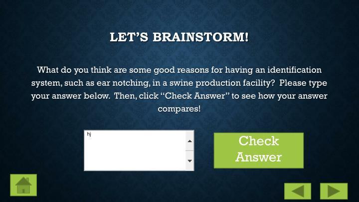 Let's Brainstorm!