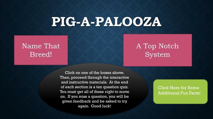 Pig-A-