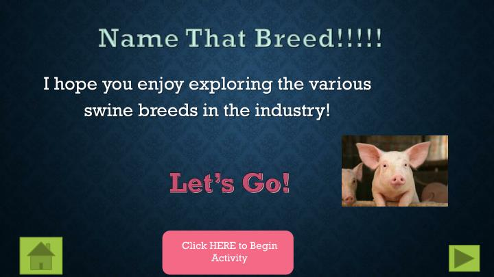Name That Breed!!!!!