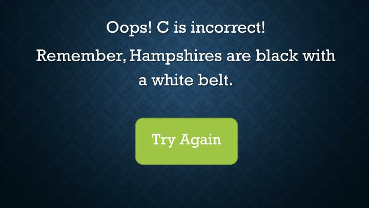 Oops! C is incorrect!