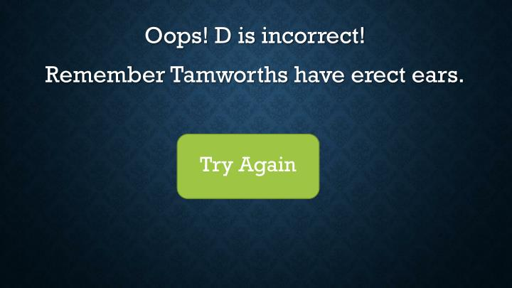 Oops! D is incorrect!