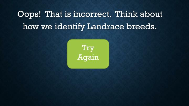 Oops!  That is incorrect.  Think about how we identify Landrace breeds.