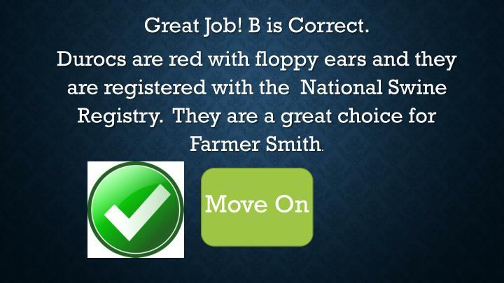 Great Job! B is Correct.