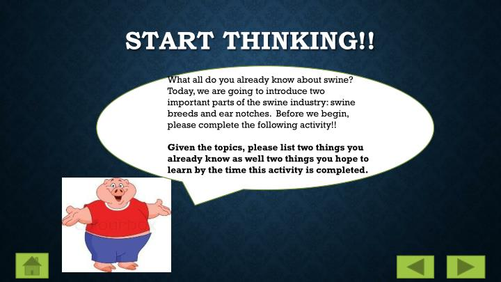 Start thinking!!