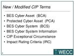 new modified cip terms