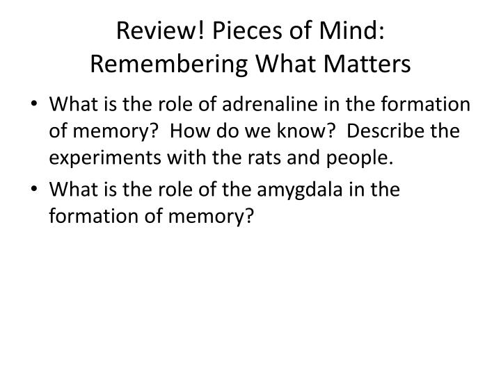 Review! Pieces of Mind:  Remembering What Matters