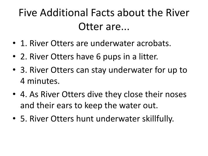Five Additional Facts about the River Otter are...