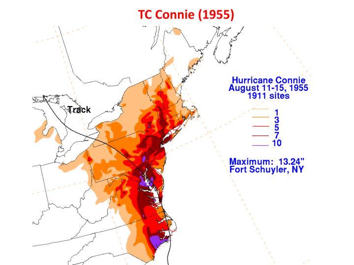 TC Connie (1955)