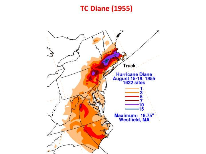 TC Diane (1955)