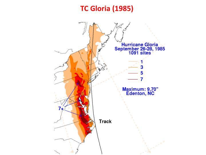 TC Gloria (1985)
