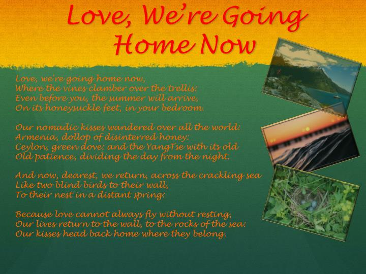 Love, We're Going Home Now