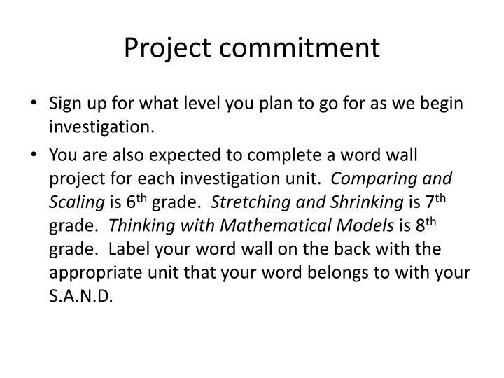 Project commitment