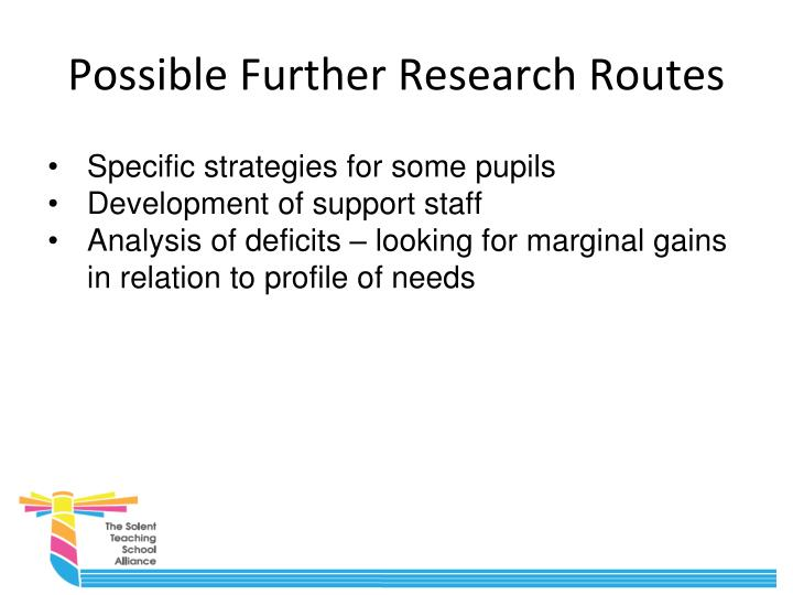 Possible Further Research Routes