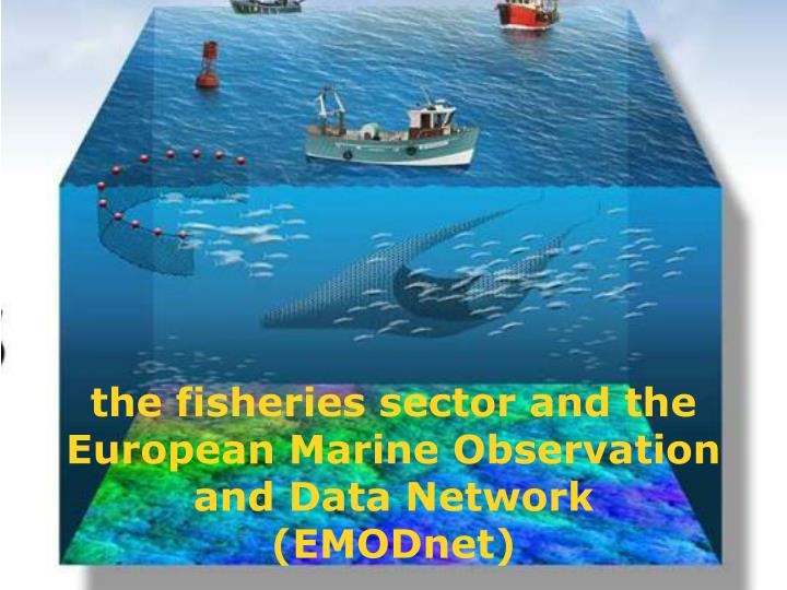 the fisheries sector and the european marine observation and data network emodnet