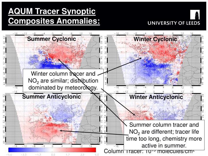 AQUM Tracer Synoptic Composites Anomalies: