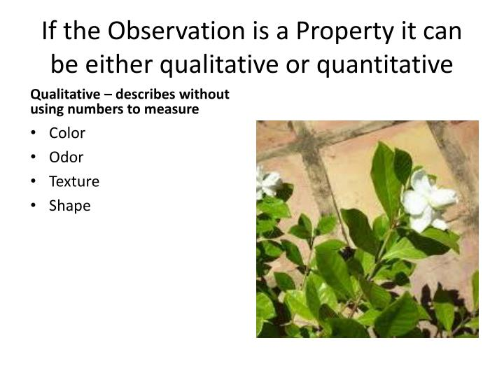 If the Observation is a Property it can be either qualitative or quantitative