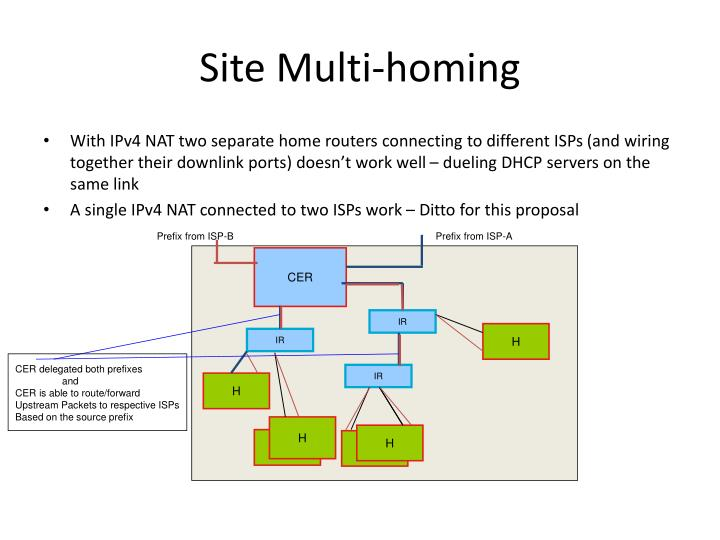 Site Multi-homing