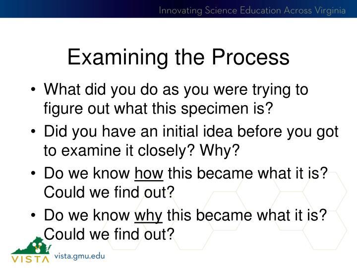 Examining the Process