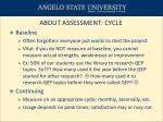 about assessment cycle