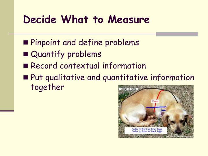 Decide What to Measure