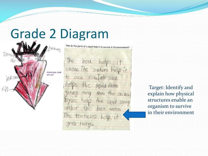 Grade 2 Diagram