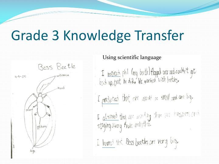 Grade 3 Knowledge Transfer