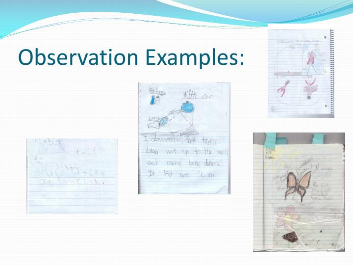 Observation Examples: