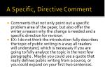 a specific directive comment