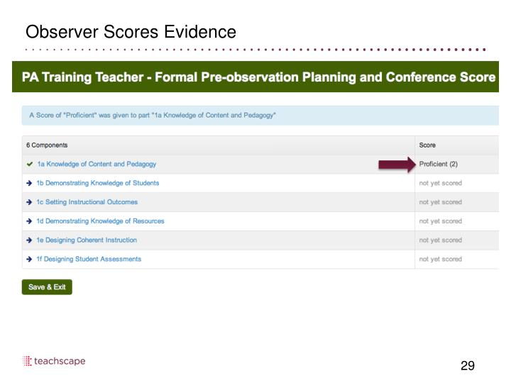 Observer Scores