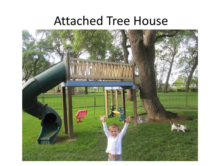 Attached Tree House
