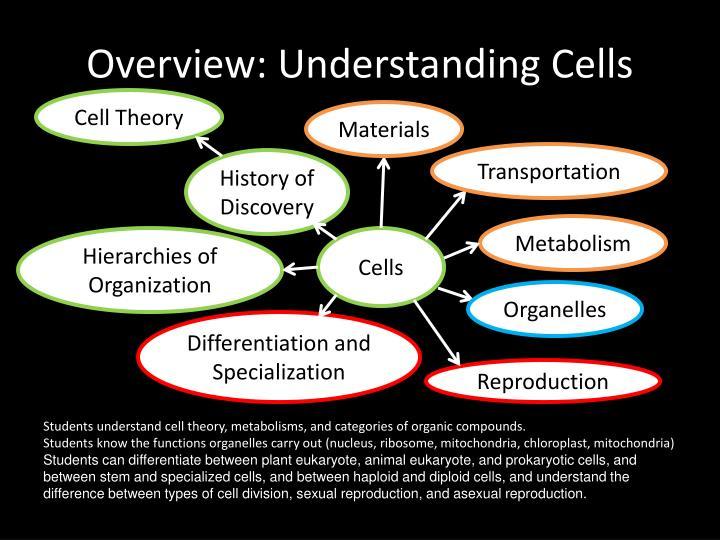 Overview: Understanding Cells
