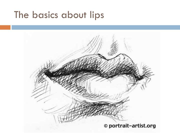 The basics about lips