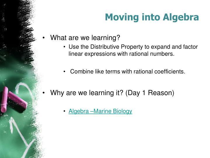 Moving into Algebra