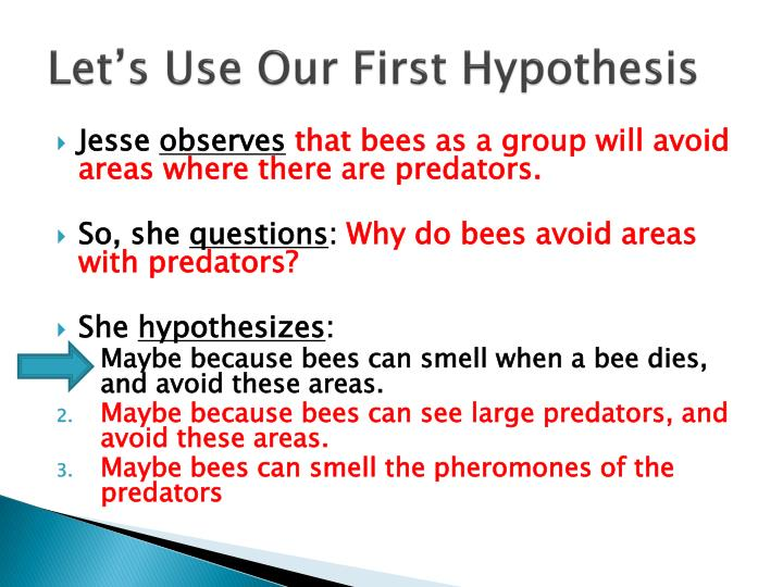 Let's Use Our First Hypothesis