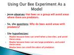 using our bee experiment as a model