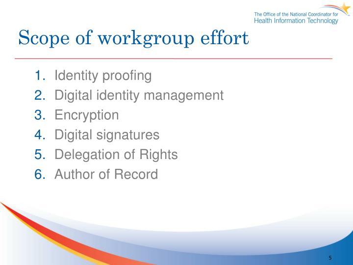 Scope of workgroup effort