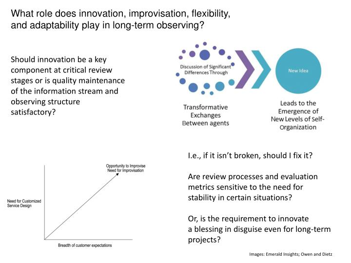 What role does innovation, improvisation, flexibility,