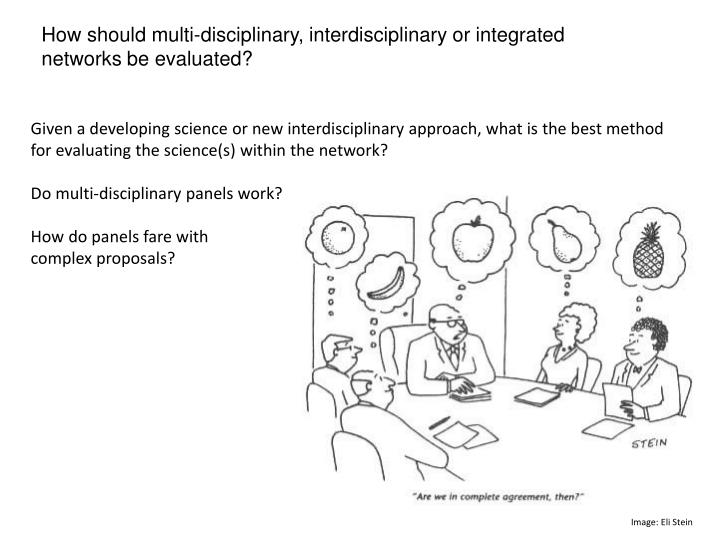 How should multi-disciplinary, interdisciplinary or integrated