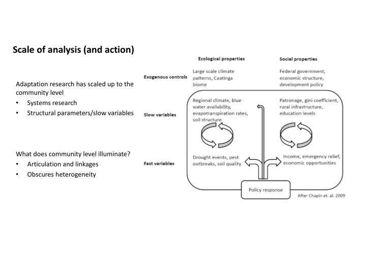 Scale of analysis and action